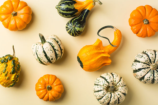 5 Tips To Decorate Your Home For The Fall