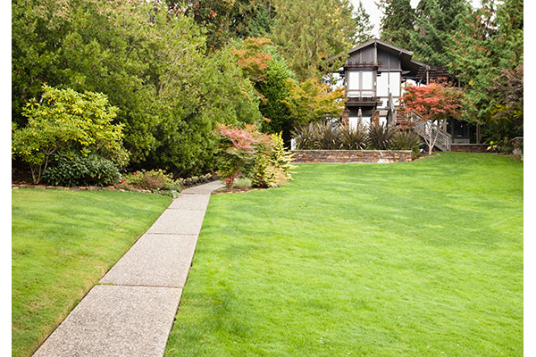 Set Up Your Yard For Summer With These 5 Tips